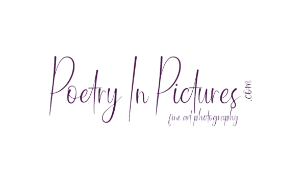 Poetry In Pictures